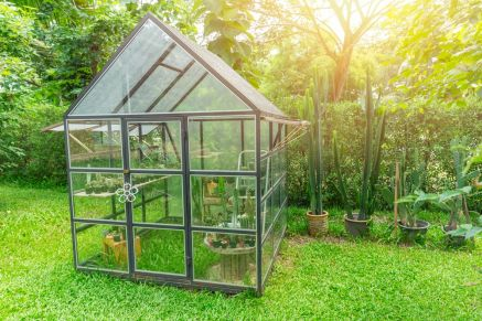 Top 6 greenhouse heating tips